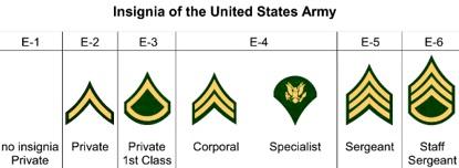 Insignia of the USA