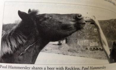 Reckless coca cola